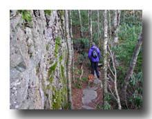 Boone Scout Trail
